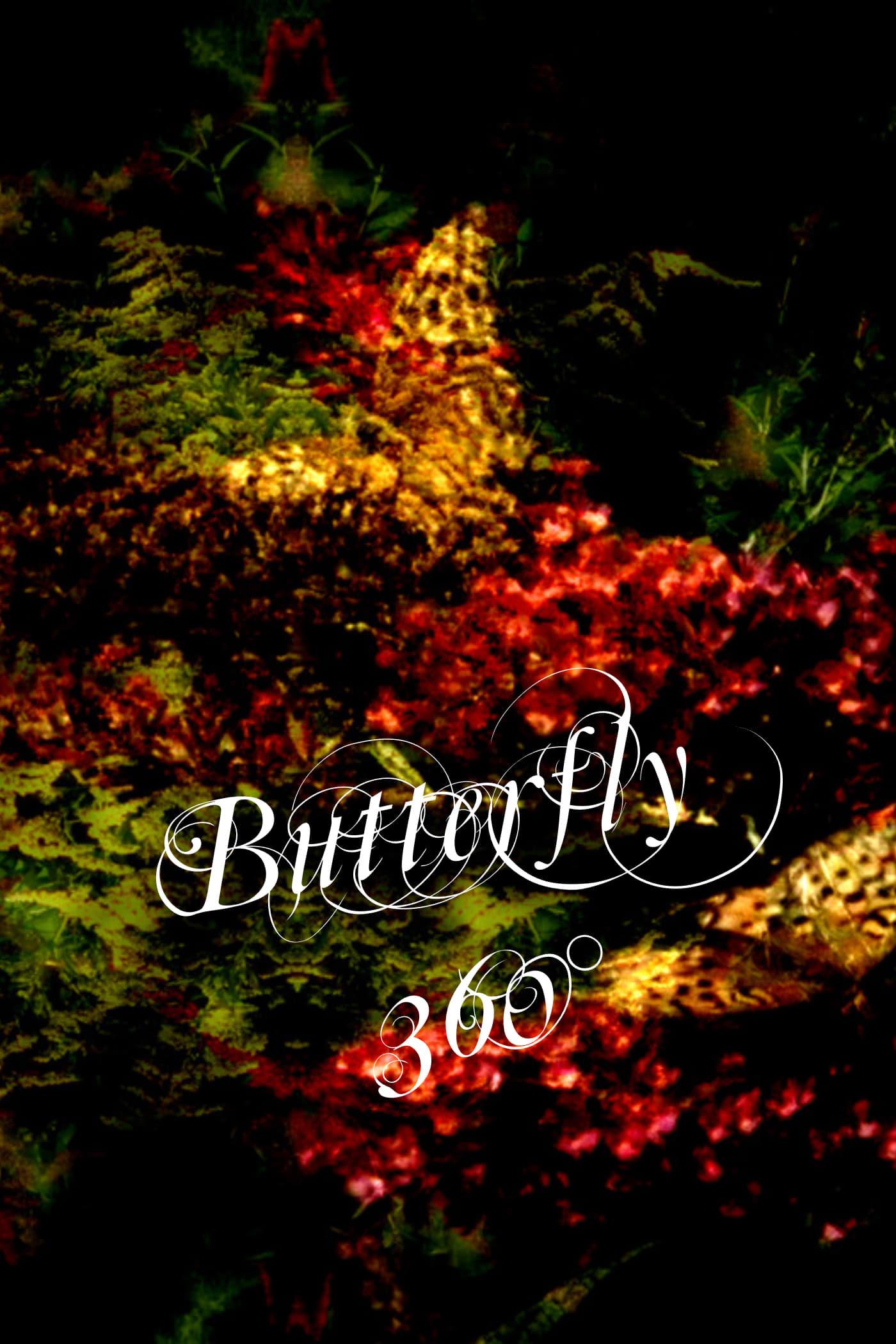 Butterfly 360°