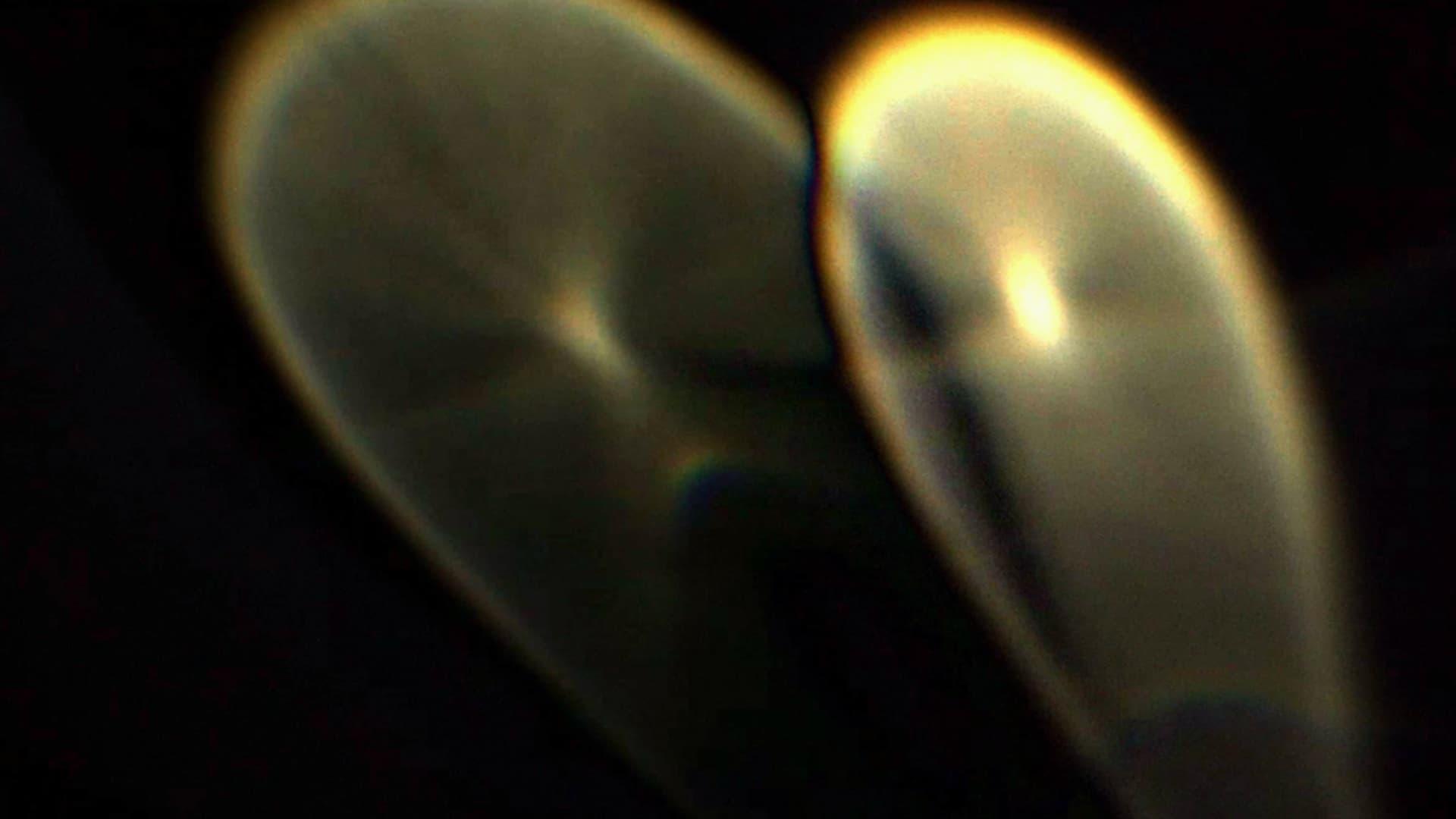 "Image from the movie ""Night Terror"""